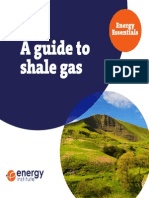Energy Essentials Shale Gas Guide