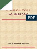 leertexto-2