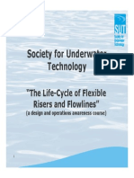 SUT Flexibles - 1 Introduction