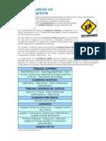 Organizacion Judicial en España.pdf