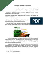Keterdapatan Batubara Di Indonesia
