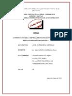 EMPRESA-ZENAI-SRL-2015 (1).docx