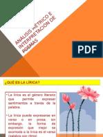 APUNTE_1_ANALISIS_E_INTERPRETACION_DE_POEMAS_58686_20150812_20150410_160343
