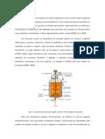 Etanol de 2ª GERAÇÃO. Biorreatores