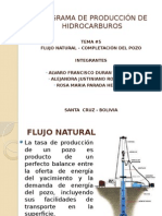 4 FLujo Natural del gas