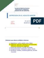 Depresión en El Adulto Mayor Usmp Semana