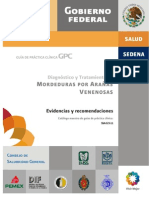 Mordedura Arac Venenosos SS 2011