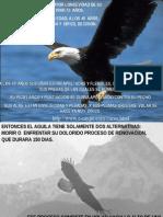 La Renovacion del Aguila