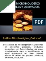 Analisis Microbiologico de Cereales