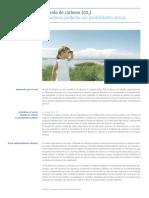 Dióxido de Carbono(C02)_Un Valioso Producto Con Posibilidades Únicas_23808-10316_116928