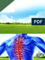 vertebral column workers.pptx