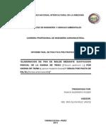 241294419-Informe-Ppp-Corregido-Roger.docx