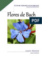 A distancia Flores de Bach