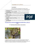 Variedades de Uva Blanca.docx