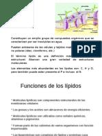 Lípidos-BioquímicaI
