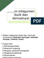 1. Materi 1 (a) Anfisman Sistem Integumen (Kulit Dan Derivatnya)