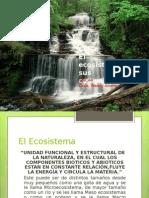 Ecosistema y Sus Componentes