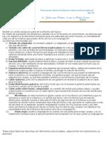 Carta de Peticion Autoguardado
