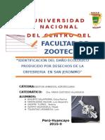 Identificación Del Daño Ecologico Producido Por Desechos de Los Alfareros en San Jeronimo