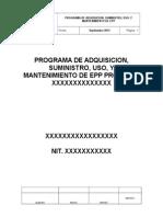 1. Programa de Uso y Porte de EPP