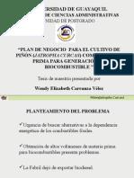275619658-CSE-COLOMBIA-PLAN-DE-NEGOCIO-PARA-EL-CULTIVO-DE-PINON-JATROPHA-CURCAS-COMO-MATERIA-PRIMA-PARA-GENERACION-DE-BIOCOMBUSTIBLE-pps.pps