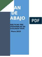 Plan de Trabajo Practicas Pre- Profesionales - Eliseo David Hurtado Marchena