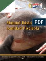 Manual Basico de Patologia