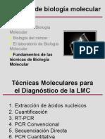 LMC PCR Silvia Pairet23
