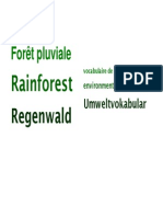 Environment Vocabulary Deutsch, English, français. Rainforest Vocabulary French German English
