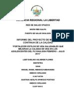 INFORME PMC P.S. SHULGONlizet.docx