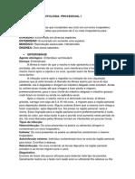 Resumo de Parasitologia II