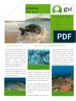 GVI Seychelles Newsletter Issue 8 September 2015