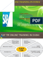 Sap Tm Online Training in Dubai