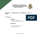 Pacora-proyecto FINAL Kiara Castro (2) - Copia