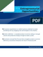 Entrepreneurial Opportunities BB.pptx