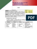 Sylabo Centrales Termoelectrica - Maestria 2015 - I