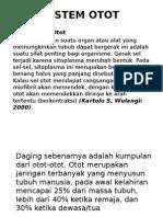 Sistem Otot Point