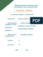 Proyecto Feria de Ciencia 2015 Elin
