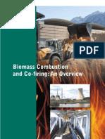 Biomass combustion & co-firing