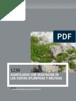 Vegetación Acantilados