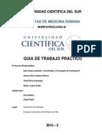 Guía Fisiología III - UCSUR 2015
