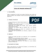 Protocolo de Prueba Hidráulica-r-2 Tarma Chico