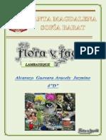 Flora y Fauna Lambayecana