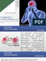 Tumores Intracraneales Unerg Jose a Nunez