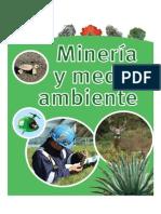 Minería y Medio Ambiente (2012)
