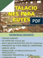 Instalaciofgtnes Para Cuyes Chasqui