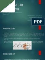 Perfil-Consultor (1).pptx