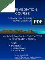 Optimization of Bioremediation Process