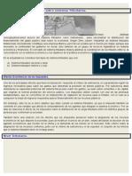 TEMA IV Estructura Económica y Sistema Tributario