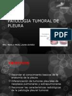 Patologia Tumoral Pleural Mple